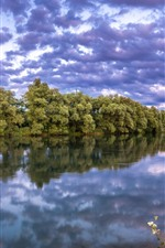 Green trees, river, clouds, dusk