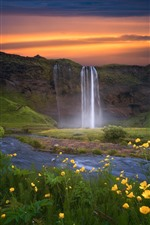 Preview iPhone wallpaper Iceland, sunset, flowers, waterfall