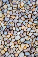 Muitos seixos, pedras, textura de fundo