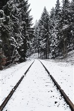 Preview iPhone wallpaper Railroad, trees, snow, winter