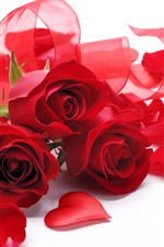 Red roses, bouquet, ribbon, white background