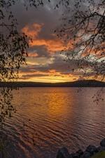 미리보기 iPhone 배경 화면 강, 나무, 일몰, 황혼