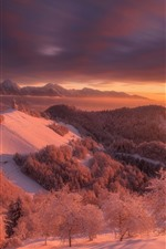Preview iPhone wallpaper Slovenia, winter, snow, trees, mountains, red style, dusk, sunset
