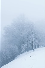 Preview iPhone wallpaper Snow, white world, trees, fog, morning, winter