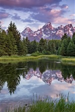 Preview iPhone wallpaper Summer, trees, lake, mountains, nature landscape