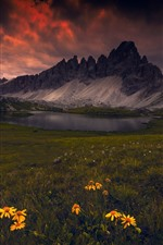 The Dolomites, lake, mountains, yellow flowers