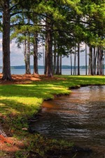 Preview iPhone wallpaper West Point Lake, USA, trees, shadow