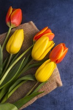 Yellow and orange tulips, bouquet