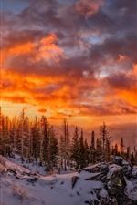 미리보기 iPhone 배경 화면 아름 다운 겨울, 눈, 나무, 구름, 붉은 하늘, 일몰