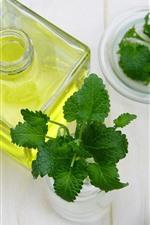 Preview iPhone wallpaper Bottle, oil, green mint leaves