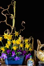 Preview iPhone wallpaper Daffodils, crocuses, yellow and purple flowers, lamp, books
