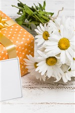 Gift, white chamomile flowers, romantic