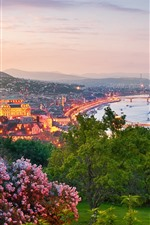 Preview iPhone wallpaper Hungary, Budapest, flowers, trees, city, river, lights, dusk