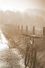 Manhã, nevoeiro, bicicleta, cerca, capim, nebuloso