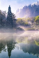 Preview iPhone wallpaper Morning, trees, lake, fog, nature scenery