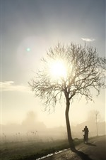Preview iPhone wallpaper Morning, trees, sun rays, fog, bike, road