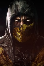 Preview iPhone wallpaper Mortal Kombat X, mask