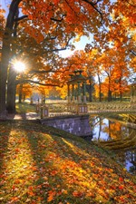 Preview iPhone wallpaper Park, trees, red leaves, autumn, bridge, sun rays, river