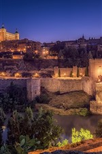 Preview iPhone wallpaper Spain, Toledo, night, city, bridge, river, lights, houses