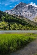 미리보기 iPhone 배경 화면 스위스, 베른 알프스, 잔디, 나무, 호수, 산, 마을