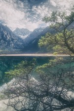 Tree, lake, mountains, water reflection, clouds, fog, hazy