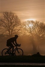 Preview iPhone wallpaper Trees, fog, morning, bike, sport, silhouette
