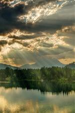 미리보기 iPhone 배경 화면 나무, 호수, 하늘, 구름, 태양 광선, 자연 풍경