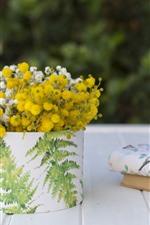 Flores brancas e amarelas, livros