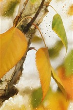 Yellow leaves, autumn, texture