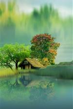 Belas paisagens, casa, lago, árvores, nevoeiro, reflexão da água