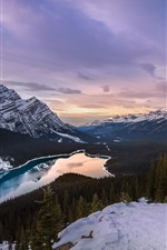Canada, Peyto Lake, mountains, trees, snow, clouds, winter