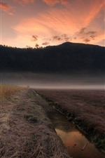 Preview iPhone wallpaper Canada, Pitt Meadows, mountains, creek, fog, morning