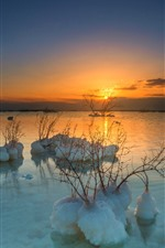 Dead Sea, plants, snow, sunset