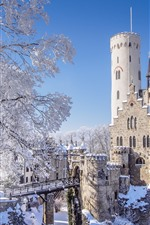 Preview iPhone wallpaper Germany, Baden-Wurttemberg, Lichtenstein Castle, winter, snow, trees