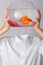 Preview iPhone wallpaper Goldfish, hands, T-shirt, creative picture