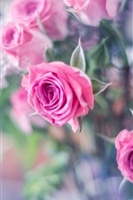 Preview iPhone wallpaper Hazy background, pink roses