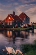 Preview iPhone wallpaper Holland, swans, bridge, river, dusk, evening