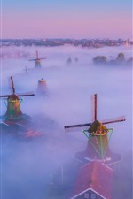 Netherlands, windmill, fog, top view