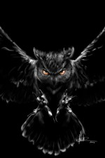 Preview iPhone wallpaper Owl, wings, flight, darkness, creative picture