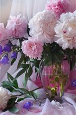Peônias rosa, flores, vaso