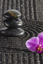 Preview iPhone wallpaper Pink phalaenopsis, stones, black sands