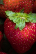 Strawberries, macro photography, fruit