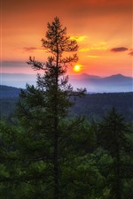 Sunset, mountains, tree, nature