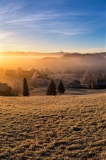 Preview iPhone wallpaper Switzerland, Kirchberg, village, trees, sun rays, morning, slope