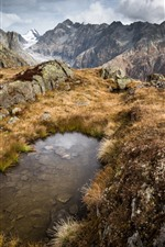 Preview iPhone wallpaper Switzerland, mountains, grass, puddle