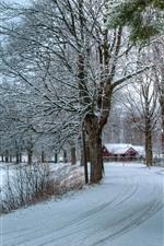 Winter, white snow, road, house