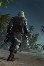 Preview iPhone wallpaper Assassin's Creed, palm trees, beach