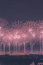 Belo fogo de artifício, Pequim, China, noite