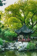 China, gazebo, park, trees, pond, willow