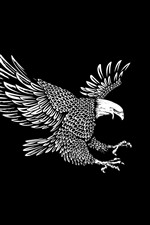 Preview iPhone wallpaper Eagle, wings, flight, black background, art picture